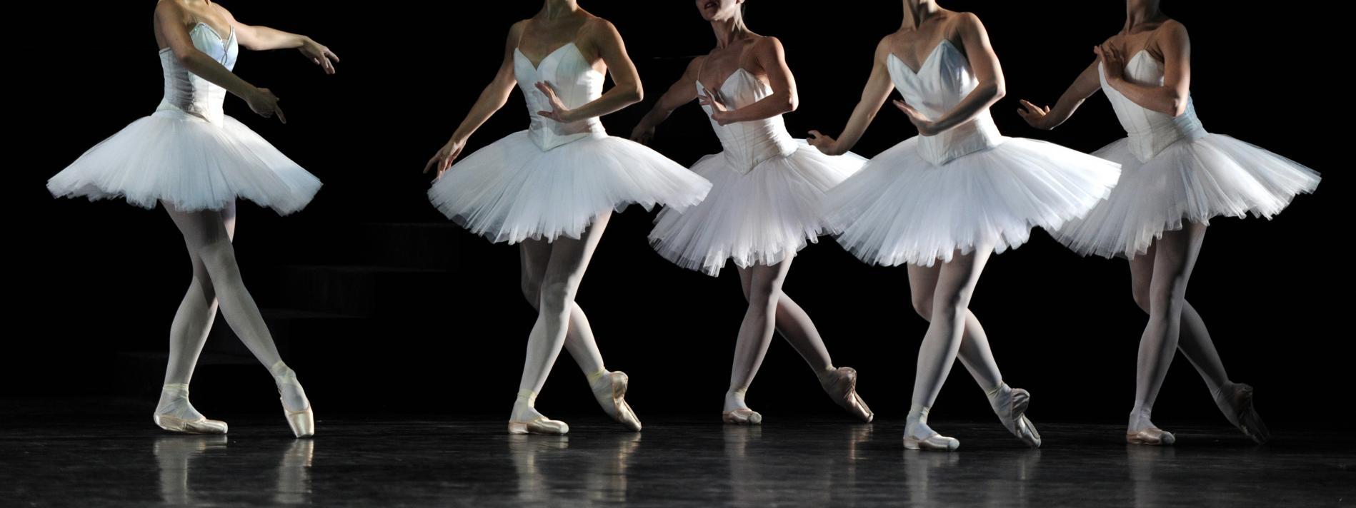 Association Périgueux Danses de Salon et Sportives